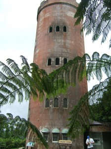 Viewing tower in El Yunque National Rain Forest Park
